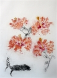 Hibiscus & Cats