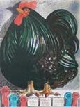 Supreme Champion Large Fowl
