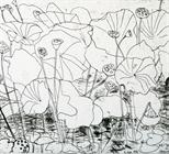 Lotus Pond - Akita