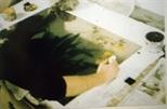 Slide: Elizabeth Blackadder etching