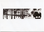 Invite Card: Hitch, Twelve Artists in Response to Hitchcock (2003)