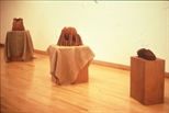 Slide: View of 'Terrain' exhibition by Karen Forbes and Sybylle von Halem, 1991