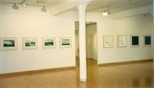 Photograph: 8 prints from the exhibition 'Black Pool - The Graphic Studio, Dublin' in Glasgow Print Studio (2001)