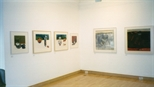 Photograph: Various prints from the exhibition 'Black Pool - The Graphic Studio, Dublin' in Glasgow Print Studio Gallery (2001)