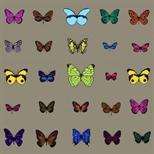 25 Butterflies