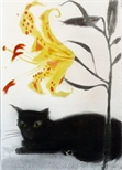 Black Cat and Lily